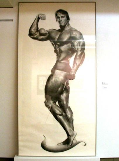 Arnold Schwarzenegger par sonnyboyy